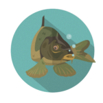 rakosnickuv-rybnik